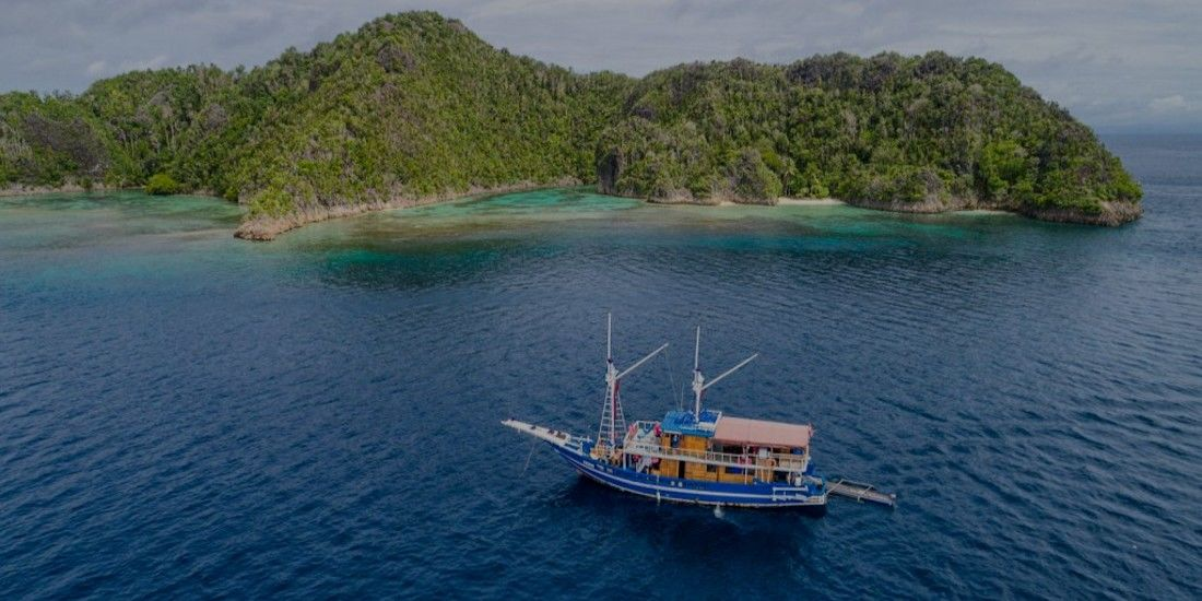 Marine conservation company tackling plastic pollution and providing community support in Indonesia - our staff picked investment