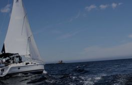 A fast growing marine company - investment opportunity