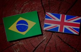 One-stop-shop for the Brazilian community in the U.K. - investment opportunity