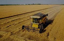 Essex-based retailer of high-quality plant machinery. - investment opportunity