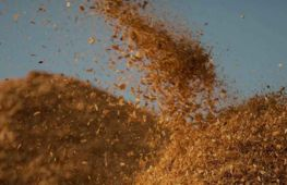 Sustainable energy suppliers selling incentivised biomass boilers - investment opportunity