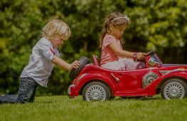 Toy manufacturers and wholesalers of children's luxury cars. - investment opportunity